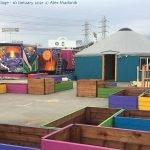 YSA Tiny House Village at the Oakland Coliseum